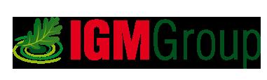 progetto grafico nuovo logo IGM GROUP - pubblicità grafica fotografia